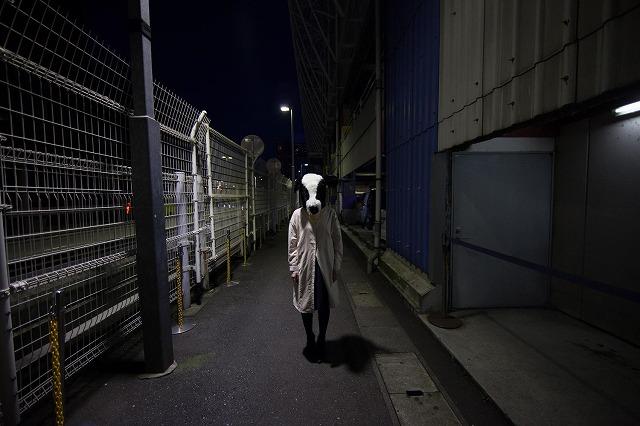 f:id:horitsukiko:20160112171615j:plain
